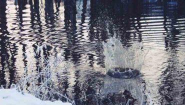 spadnutí do vody